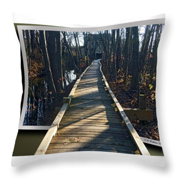 Abbotts Nature Trail Throw Pillow by Brian Wallace