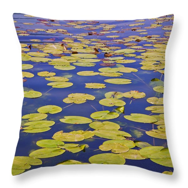 absolutly idyllic Throw Pillow by Joana Kruse