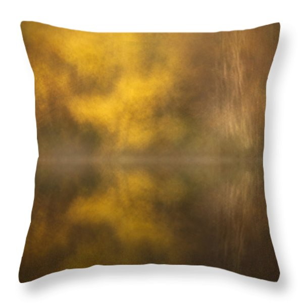 Abstract Birch Reflections Throw Pillow by Andy Astbury