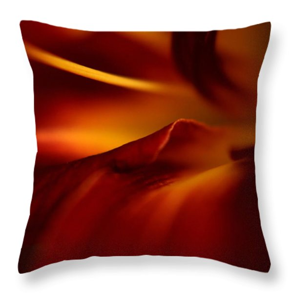 Abstract Floral Throw Pillow by Floyd Menezes