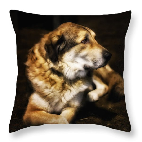 Adam - The Loving Dog Throw Pillow by Bill Tiepelman