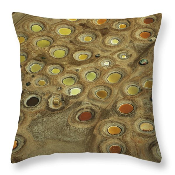 Aerial View Of Multi-colored Dyeing Throw Pillow by Bobby Haas