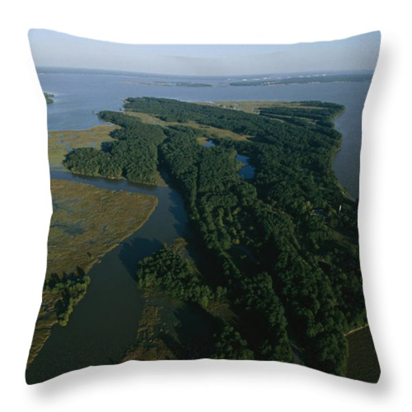 Aerial View Of The James River Throw Pillow by Ira Block