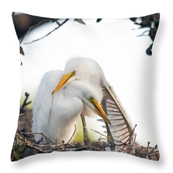 Affectionate Chicks Throw Pillow by Kenneth Albin