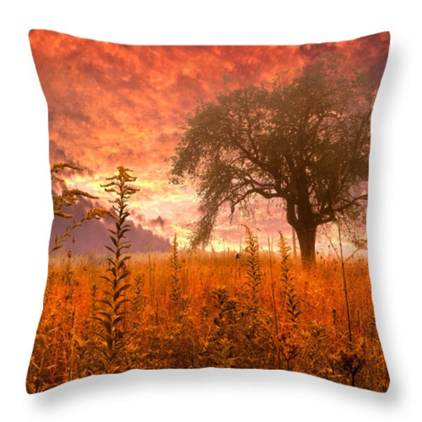 Aflame Throw Pillow by Debra and Dave Vanderlaan