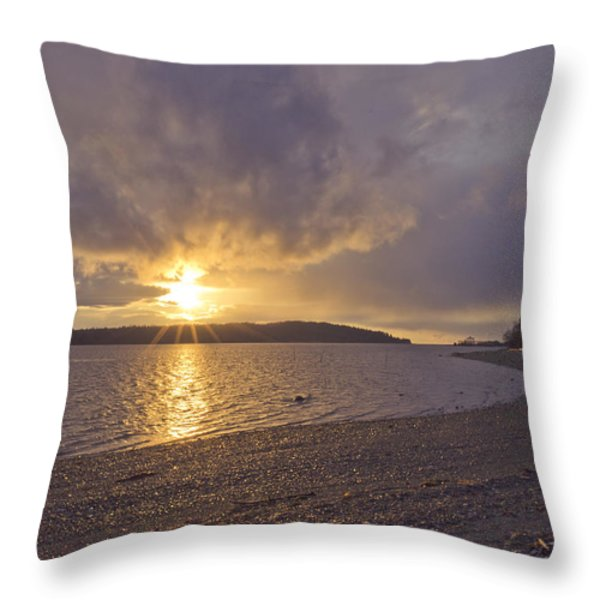 After The Storm Throw Pillow by Priya Ghose