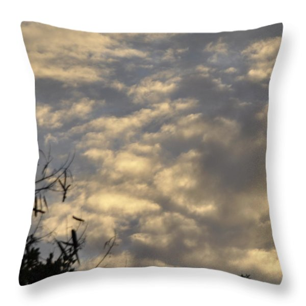 After the Storm Throw Pillow by Sandy Poore