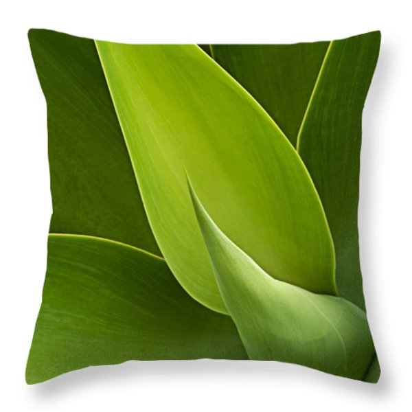 Agave Throw Pillow by Heiko Koehrer-Wagner