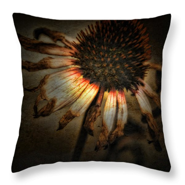 Ageless Beauty Throw Pillow by Bonnie Bruno
