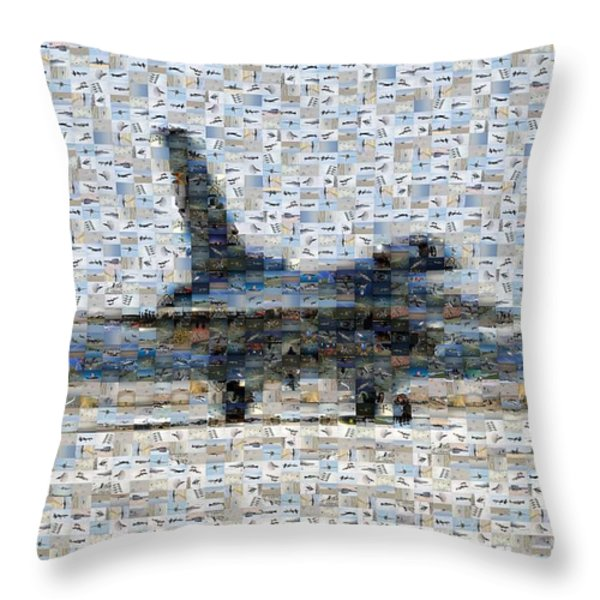 Airforce F-4866 Mosaic  Throw Pillow by Darleen Stry