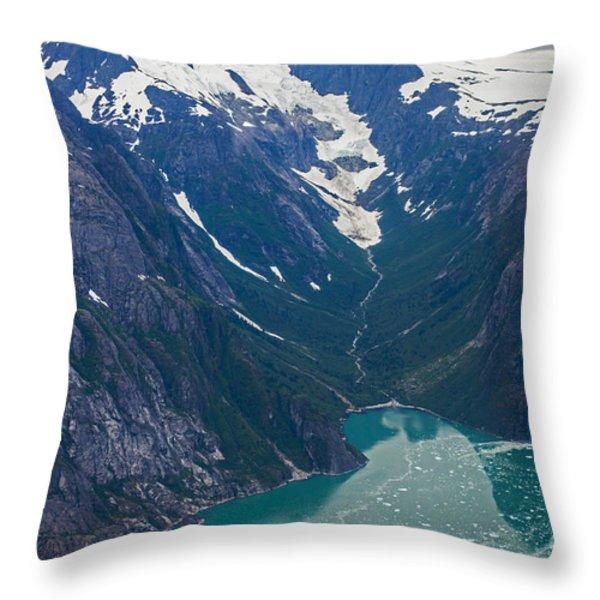 Alaska Coastal Throw Pillow by Mike Reid