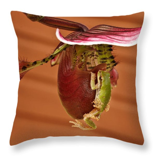 All aboard Throw Pillow by Jean Noren