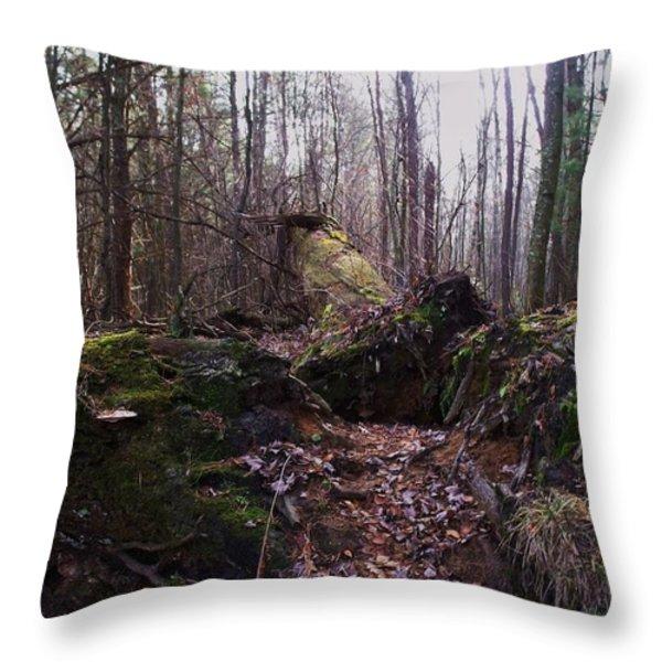 All Fall Down Throw Pillow by Anna Villarreal Garbis
