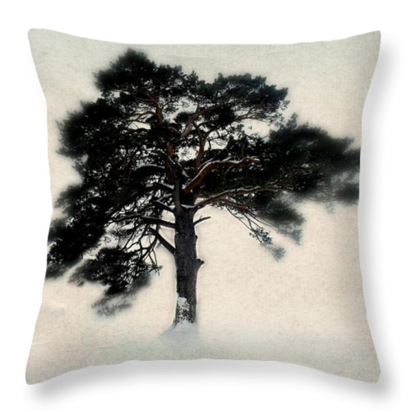 All in white Throw Pillow by Julie Hamilton