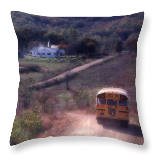 Almost Home Throw Pillow by Garry McMichael