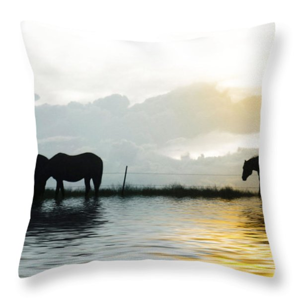 Alone Throw Pillow by Susan Kinney