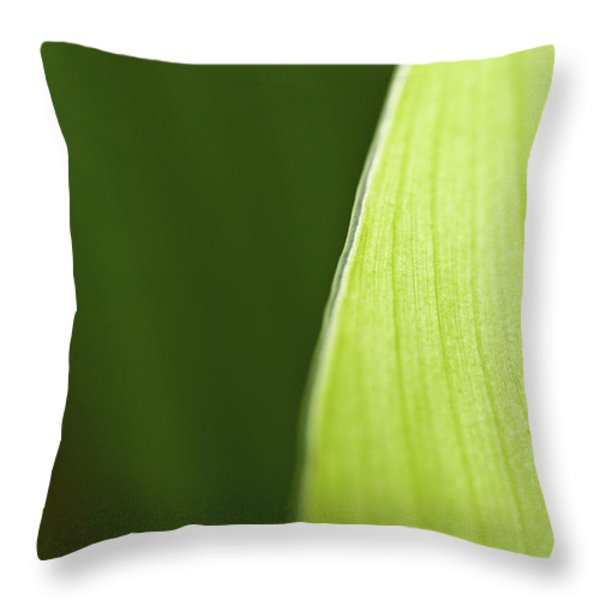 Along the Edge Throw Pillow by Rich Franco