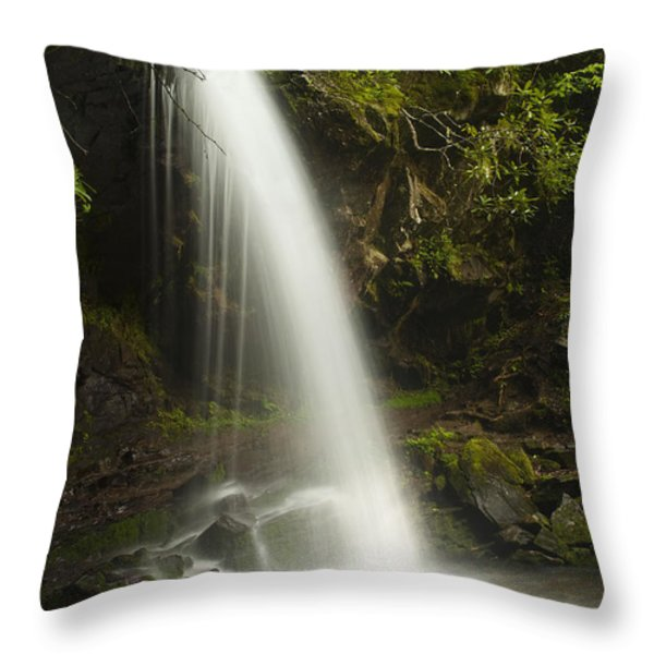 Alongside Grotto Falls Throw Pillow by Andrew Soundarajan