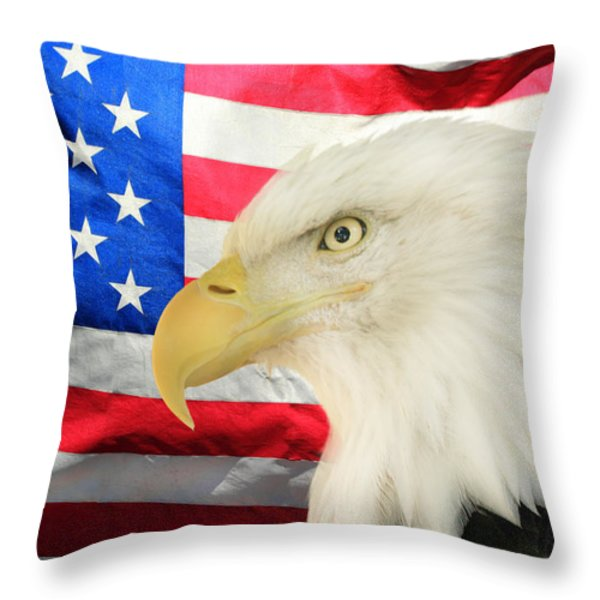 American Throw Pillow by Shane Bechler