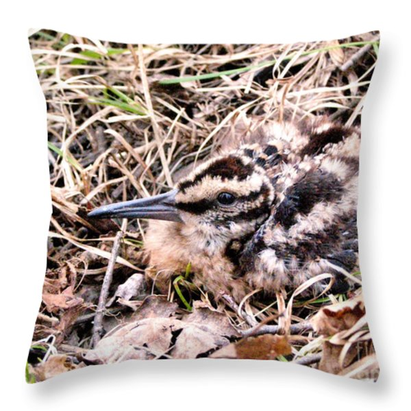 American Woodcock Chick No. 2 Throw Pillow by Angie Rea