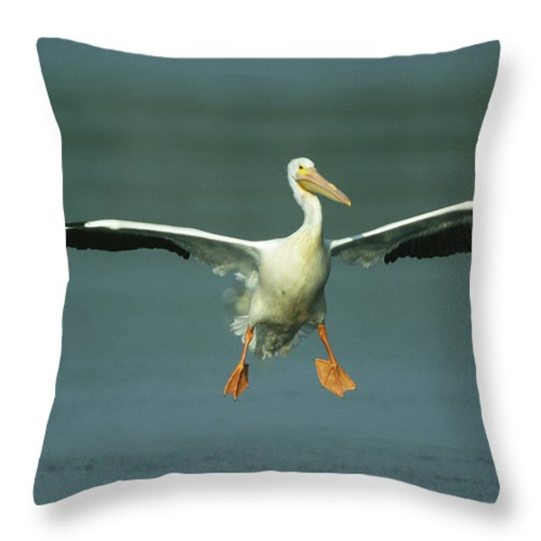 An American White Pelican In Flight Throw Pillow by Klaus Nigge