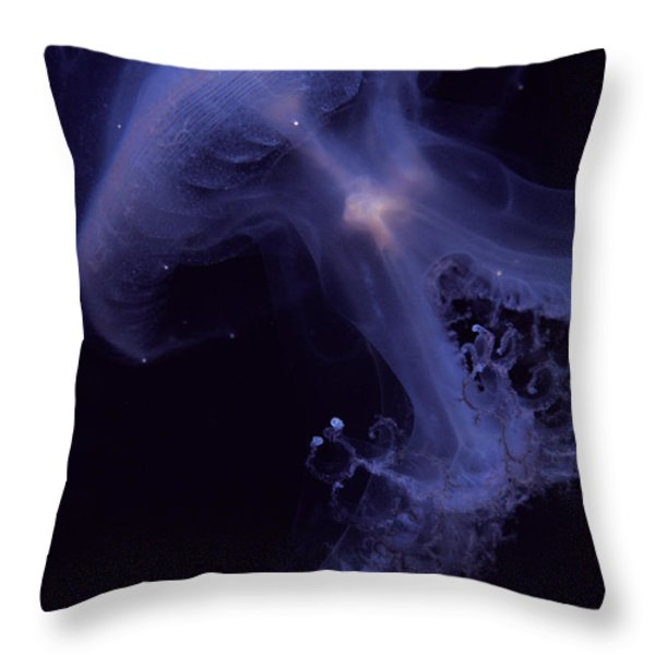 An Iridescent Blue Southern Tailed Throw Pillow by Jason Edwards