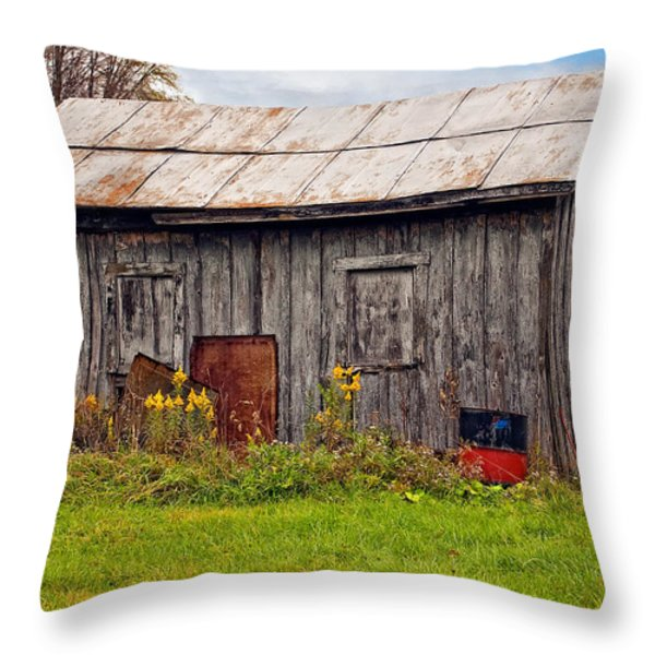 An Orderly World Throw Pillow by Steve Harrington