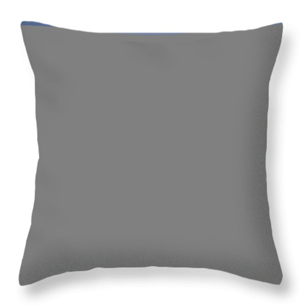 An Soybean Field Is Harvested Throw Pillow by Annie Griffiths