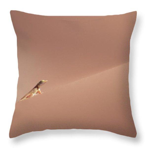 Anchietas Desert Lizard Meroles Throw Pillow by Gerry Ellis