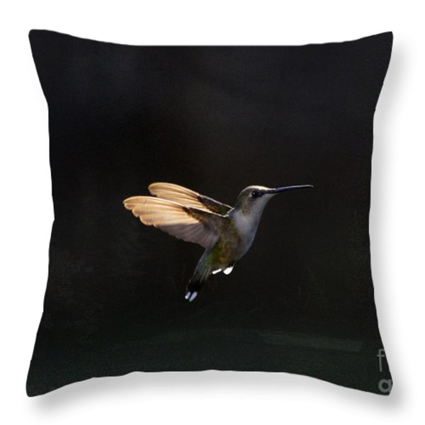 Angel Wings at Sunset Throw Pillow by Cris Hayes