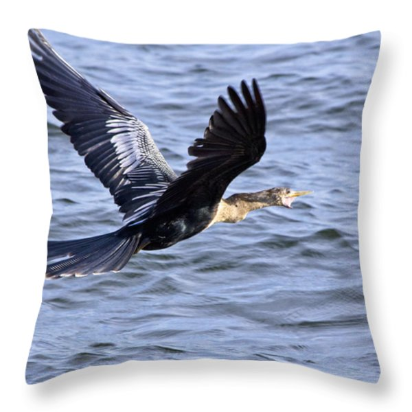 Anhinga In Flight Throw Pillow by Roger Wedegis