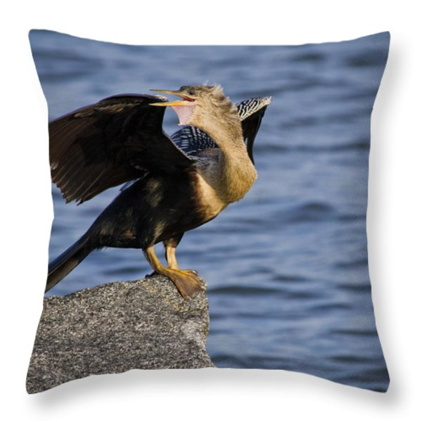 Anhinga Looking Back Throw Pillow by Roger Wedegis