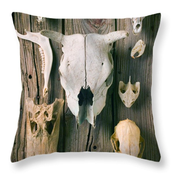Animal Skulls Throw Pillow by Garry Gay