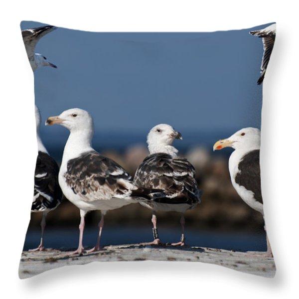 Annual Seagull Congress Throw Pillow by Michael Mogensen