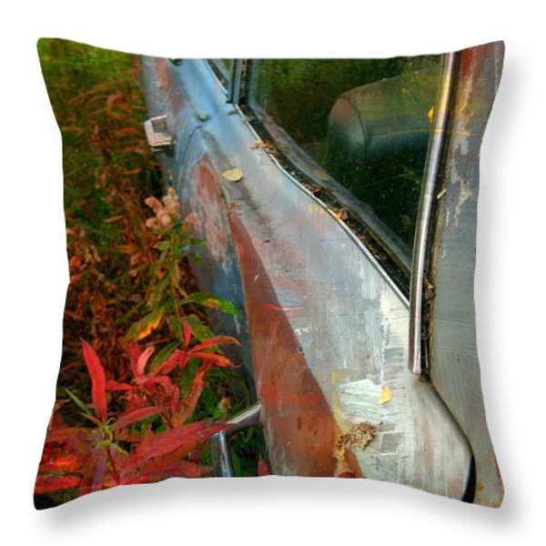 Another Autumn Throw Pillow by Shirley Sirois