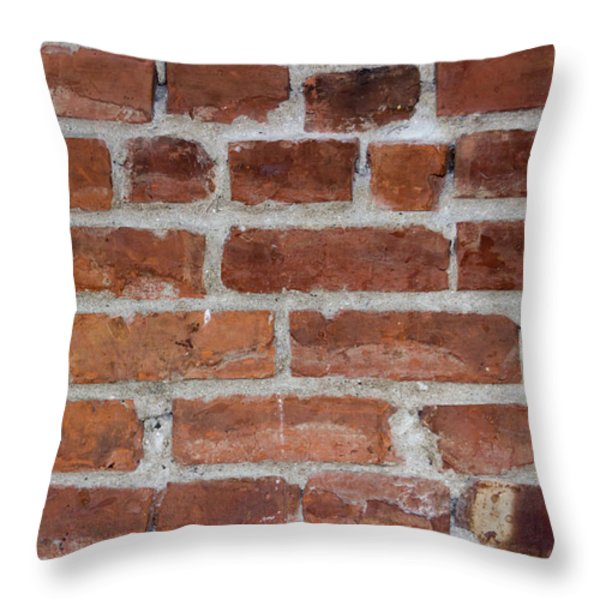 Another Brick In The Wall Throw Pillow by Heidi Smith