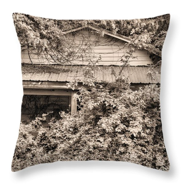 Another Internet Victim  Throw Pillow by JC Findley