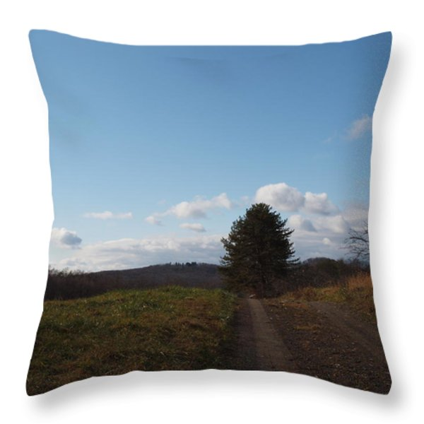 Another Road To Heaven Throw Pillow by Robert Margetts