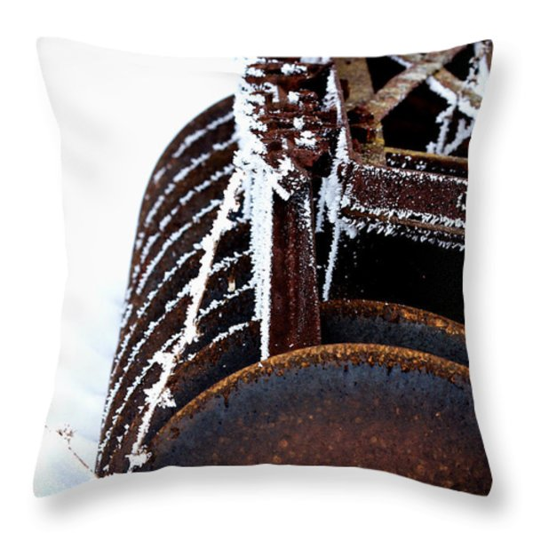 Another Winter Throw Pillow by Jarrod Erbe