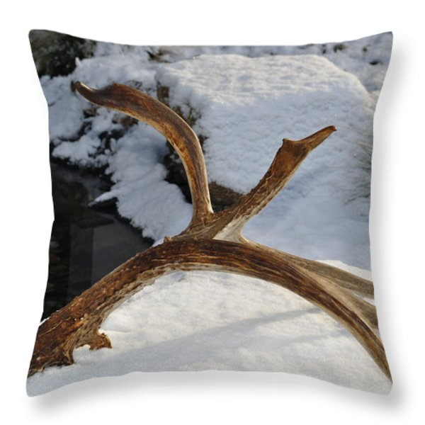 Antler 2 Throw Pillow by Heather L Wright