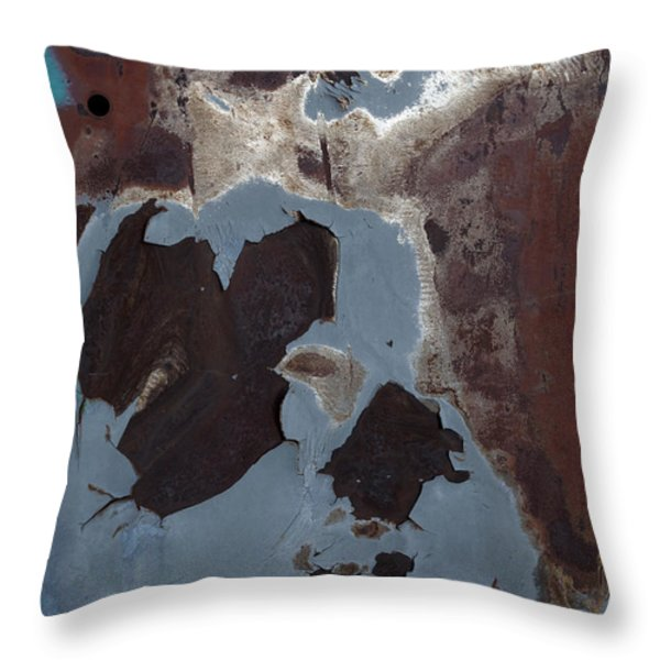 Ap10 Throw Pillow by Fran Riley