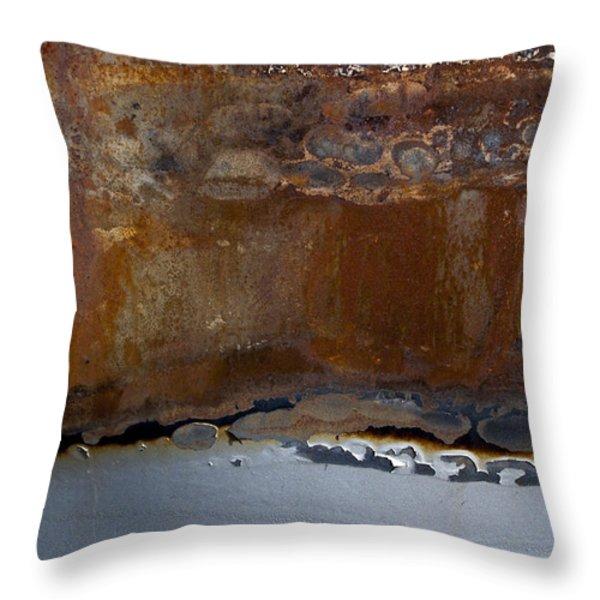 AP4 Throw Pillow by Fran Riley