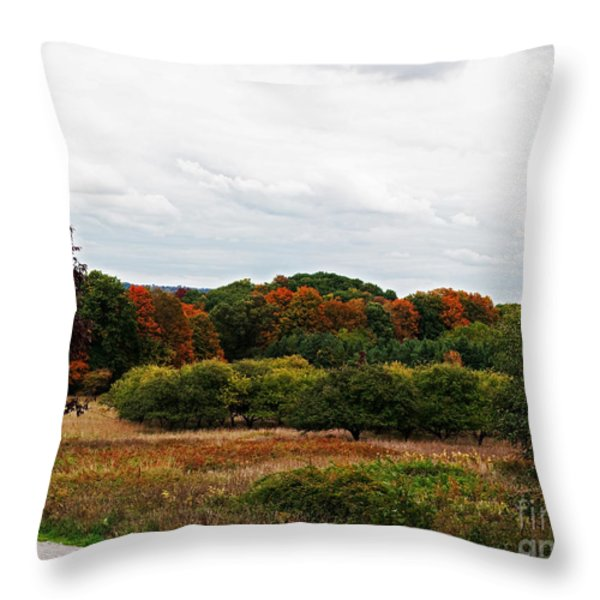 Apple Orchard Gone Wild Throw Pillow by Barbara McMahon