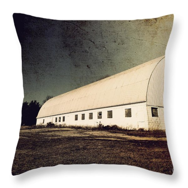 Appleton Barn Throw Pillow by Joel Witmeyer