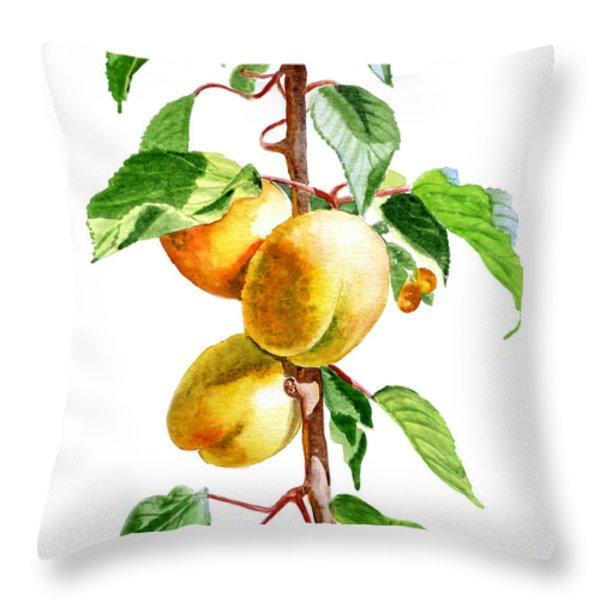 Apricots Throw Pillow by Irina Sztukowski