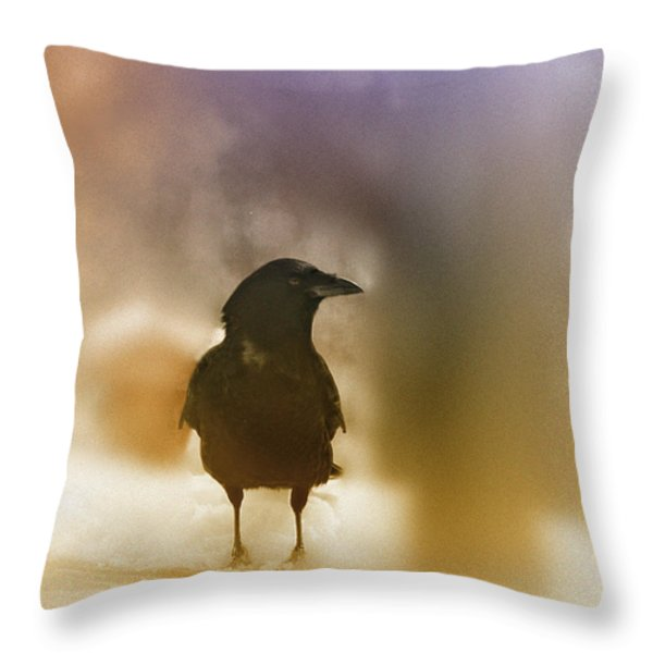 April Raven Throw Pillow by Susan Capuano