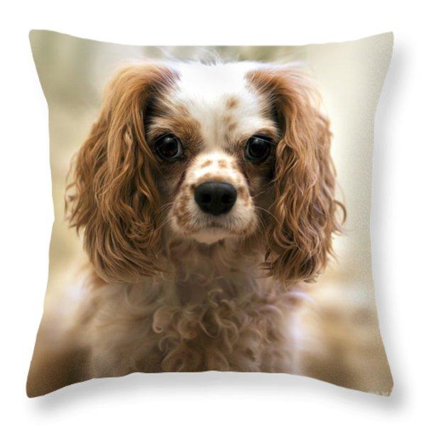 Archie Portrait Throw Pillow by Jane Rix