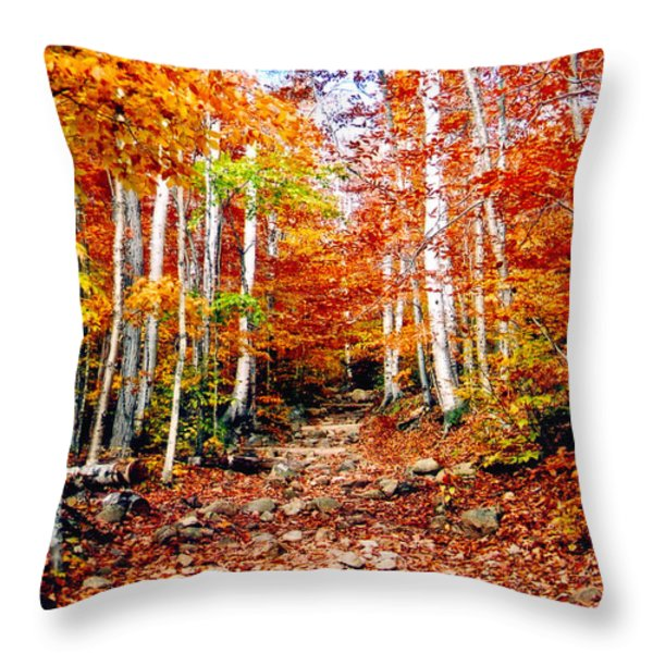 Arethusa Falls Trail Throw Pillow by Greg Fortier