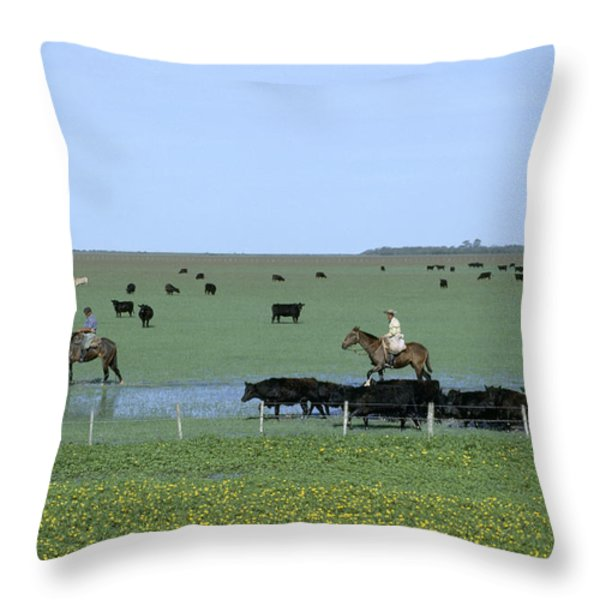Argentine Gauchos, Or Cowboys, Herd Throw Pillow by James P. Blair