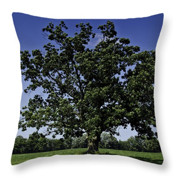 As Above As Below Throw Pillow by LeeAnn McLaneGoetz McLaneGoetzStudioLLCcom